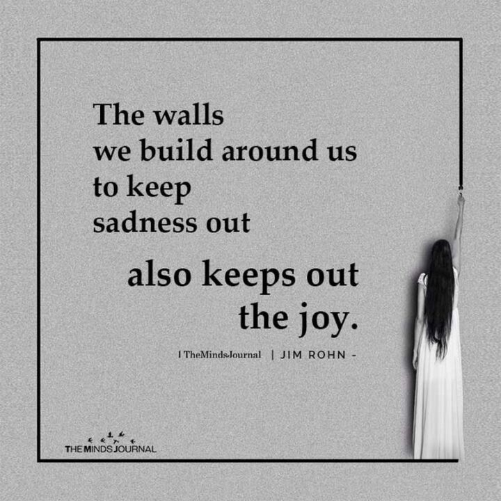 """""""The walls we build around us to keep sadness out also keeps out the joy."""" - Jim Rohn"""