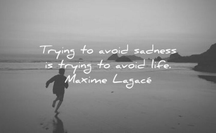 """""""Trying to avoid sadness is trying to avoid life."""" - Maxime Lagacé"""