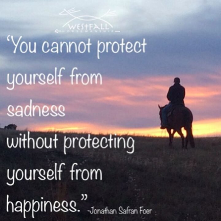 """""""You cannot protect yourself from sadness without protecting yourself from happiness."""" - Jonathan Safran Foer"""