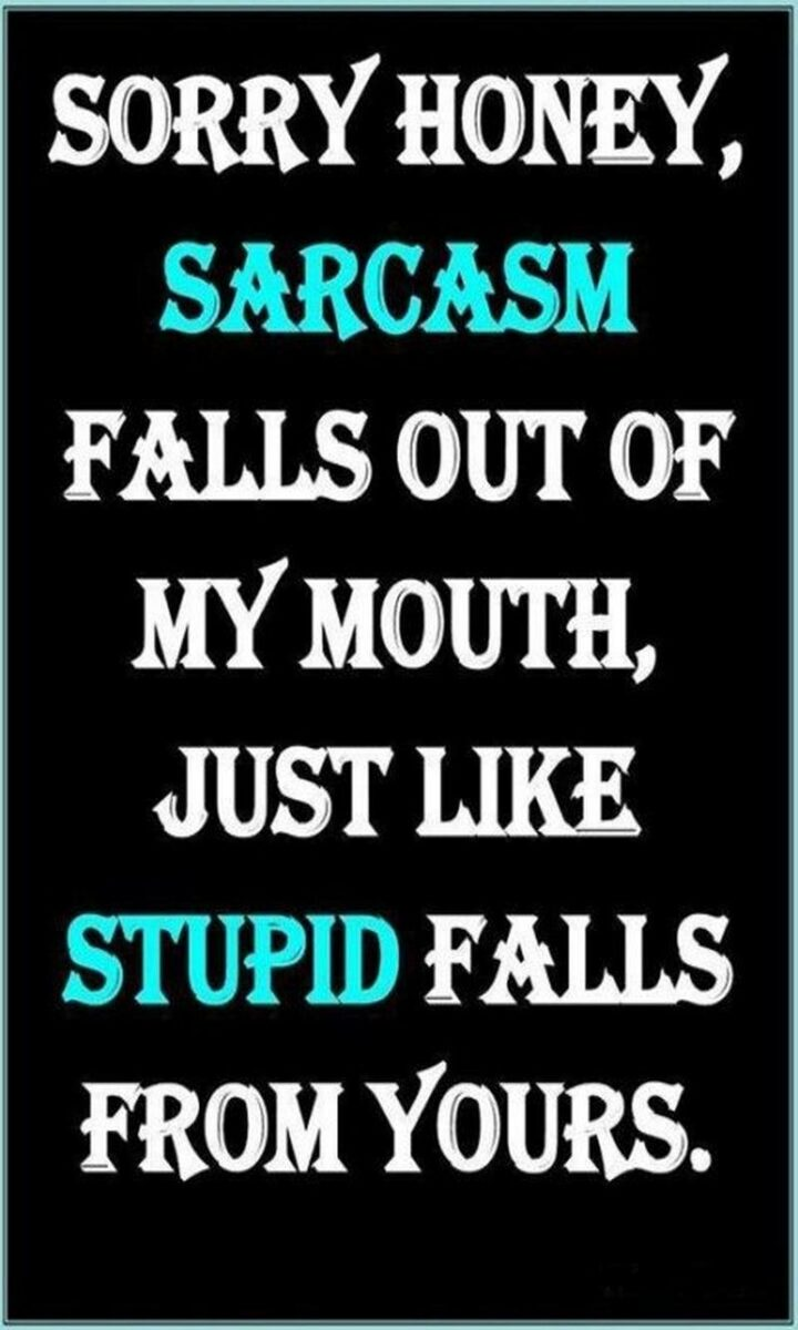 """""""Sorry honey, sarcasm falls out of my mouth, just like stupid falls from yours."""""""