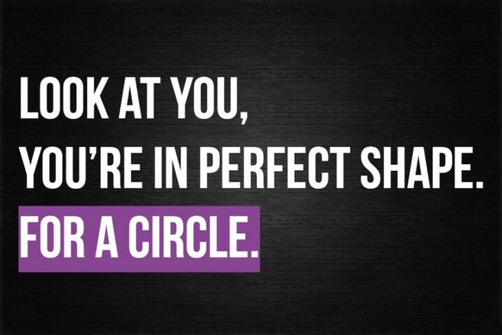 """""""Look at you, you're in perfect shape. For a circle."""""""