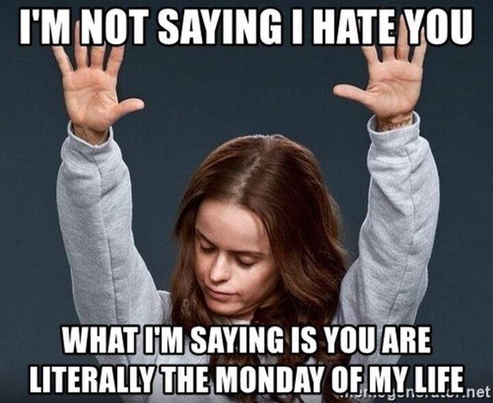 """""""I'm not saying I hate you. What I'm saying is that you are literally the Monday of mylife."""""""