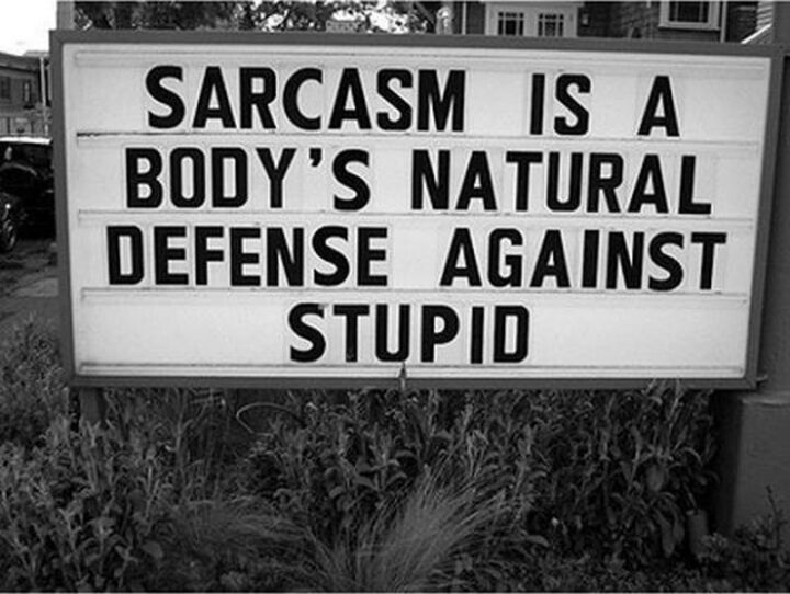 """""""Sarcasm is a body's natural defense against stupid."""""""