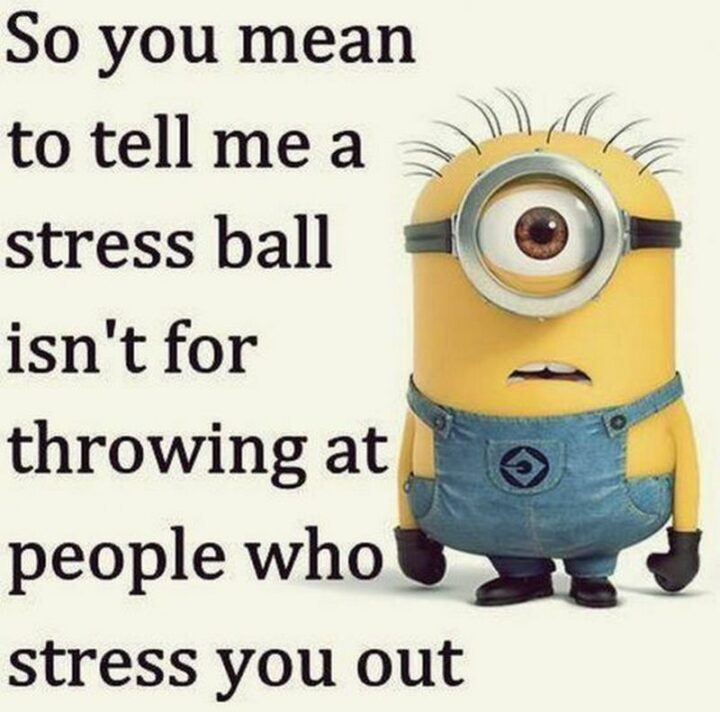 """""""So you mean to tell me a stress ball isn't for throwing at people who stress you out."""""""