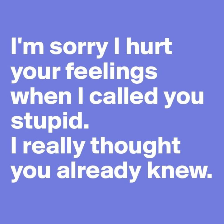 """""""I'm sorry I hurt your feelings when I called you stupid. I really thought you already knew."""""""