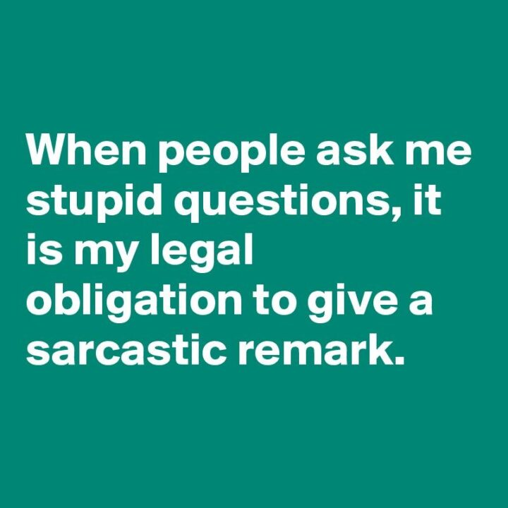 """""""When people ask me stupid questions, it is my legal obligation to give a sarcastic remark."""""""